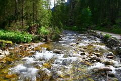 Mountain river in Tatra mountains Stock Photography