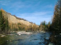 Mountain river with the thresholds Stock Images