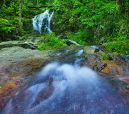 Mountain river in tropical rain forest Stock Photography