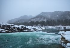 Mountain river in winter snow. Mountain river with turquoise color in the mountains during a snowfall Royalty Free Stock Images