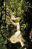Mountain river in the Tyrolean Alps. In drinking water quality Royalty Free Stock Photo