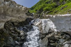 Mountain river under the summer snow in Carpathian mountains Stock Photography