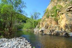 Mountain river Royalty Free Stock Photo