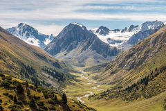 Mountain river valley Stock Photography