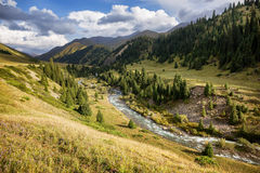 Mountain river valley Stock Image