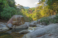 Mountain river in Vietnam Royalty Free Stock Photos