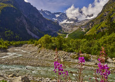 Mountain River View Royalty Free Stock Image