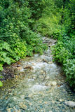 The mountain river. Village Dombay, Russia Royalty Free Stock Photography