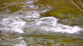 Mountain river water boiling stock video