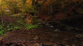 Mountain River and Waterfall in the Autumn Forest. Cairn stock video