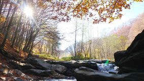 The mountain river with waterfall in autumn forest. The mountain river with waterfall in autumn forest and the sun shining through the foliage.The leaves stock video footage