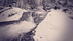 Mountain river in the winter Stock Photography