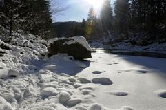 Mountain river in winter royalty free stock image