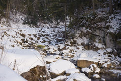 Mountain river in the winter Royalty Free Stock Images
