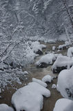 Mountain river in winter. The photo was taken in North Ossetia, in the Digor gorge Royalty Free Stock Image