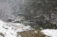 Mountain river in winter. The photo was taken in North Ossetia, in the Digor gorge Stock Images