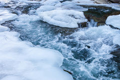 Mountain river in winter Royalty Free Stock Photography