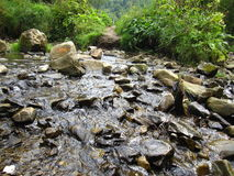 Mountain river. Winter in the snowy mountains Stock Photo