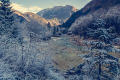 Mountain river in winter. Mountain river in river. Surroundings covered with frost and ice Stock Image