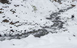 mountain river in winter time Stock Photography