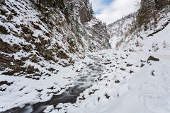 mountain river in winter time Royalty Free Stock Image