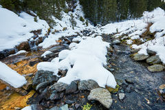 Mountain river on wintertime Royalty Free Stock Image