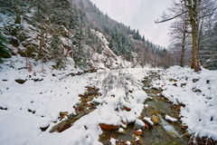Mountain river on wintertime Royalty Free Stock Photos