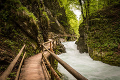 Mountain river and wooden bridge in Vintgar Gorge, Slovenia Royalty Free Stock Photography