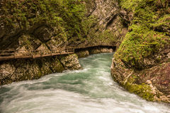 Mountain river and wooden bridge in Vintgar Gorge in Slovenia Royalty Free Stock Image