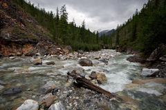 Mountain river Yamangol in East Sayan Mountains Stock Photos