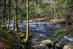 Mountain rivers. Great smoky mountains park Stock Image