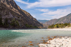 Mountain rivers Argut and Katun, Altai, Russia Stock Images