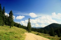 Mountain road. Beautiful afternoon in Apuseni mountains Royalty Free Stock Photo