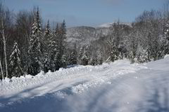 Mountain road. Picture taken at north of Quebec city on a snowshoeing trail Royalty Free Stock Photography