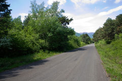 Mountain road. Empty mountain road with forest royalty free stock photos