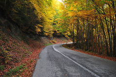 Mountain road. In olympus greece. autumn royalty free stock image