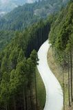 Mountain Road. White road running through a forested mountain Royalty Free Stock Photo