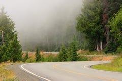 Mountain road. In Olympic National Park, Washington Stock Photos