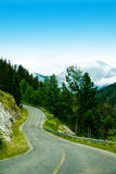 Mountain Road. A curvy mountain road through the trees Royalty Free Stock Photography