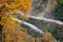 On mountain road. The autumn is the beautiful season, is the traveling good time.The photography place is the Chinese Sichuan Nanjiang County's Mt. Guangwu Royalty Free Stock Photos