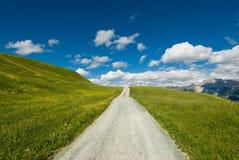 Mountain road. On wide open green meadow in swiss alps Stock Photo