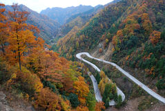 On mountain road. The autumn is the beautiful season, is the traveling good time.The photography place is the Chinese Sichuan Nanjiang County's Mt. Guangwu Stock Photography