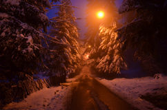 Mountain road along the forest in winter season Stock Photo