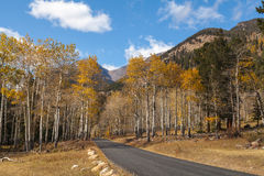 Mountain Road Through Aspens in Fall Royalty Free Stock Photo
