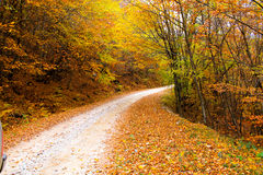 A mountain road in atumn Royalty Free Stock Images
