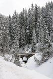 Mountain Road, Austria Stock Photo