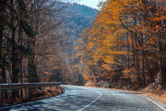 Mountain road in the autumn bright a sunny day Royalty Free Stock Photos