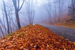 Mountain road in autumn colours Royalty Free Stock Photos