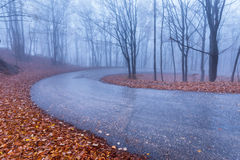 Mountain road in autumn colours Stock Photography