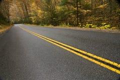 Mountain Road In Autumn Rain Stock Images